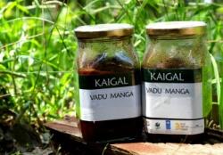 Vadu Manga Pickle 500 Gms-Kaigal Trust