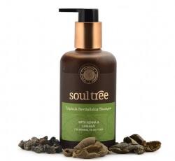Triphala Revitalising Shampoo 250 Ml-Soul Tree