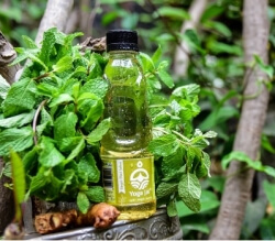 Ginger Mint Jalwa Juice 250 Ml-Yoga Jal
