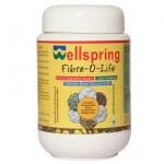 Fibre O Life 360 Gms-Wellness