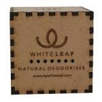 Natural Car Deodoriser (Square)-White Leaf